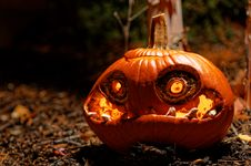 Free Halloween Pumpkin Stock Photos - 35103633