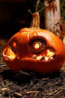 Free Halloween Pumpkin Royalty Free Stock Photo - 35103635