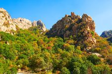 The Autumn Forest And Peak Of Zu Mountain Royalty Free Stock Images