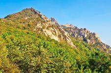 The Autumn Forest Of Zu Mountain Stock Photo