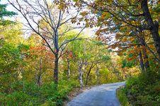 Free Multicoloured Autumn Forest Of Zu Mountain Stock Photos - 35107243