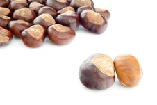Free Chestnuts Royalty Free Stock Images - 35130119