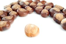 Free Chestnuts Stock Images - 35130124