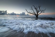 Free Botany Bay Tide Royalty Free Stock Photos - 35137458