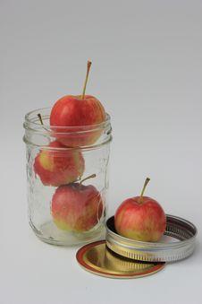 Free Crabapples In A Sealer Jar Stock Photo - 35141040