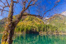 Free Jiuzhaigou Valley Scenic And Historic Interest Area Royalty Free Stock Image - 35142016