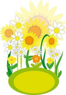Free Summer Yellow Flowers Stock Photography - 35145822