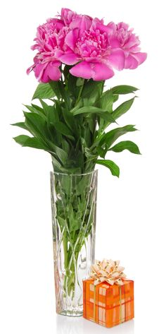 Free Flowers In A Vase Stock Images - 35151384