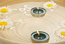 Free Two Burning Candles, Heads Of Camomiles In Dish Royalty Free Stock Images - 35162099