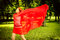 Free Happy Woman In Red Rejoices To Wind Stock Photography - 35162132