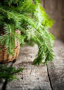 Free Green Branches Of Fir In A Basket Royalty Free Stock Image - 35185426