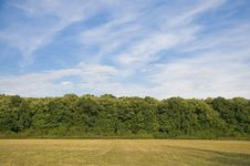 Free Forest Edge Royalty Free Stock Photos - 35187668