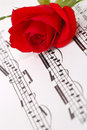 Free Red Silky Rose Royalty Free Stock Photo - 3523195