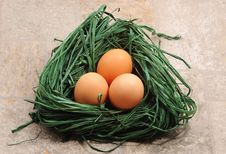 Free Nest With Eggs Royalty Free Stock Photos - 3522438