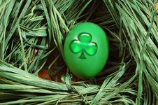 Free Nest With A Green Egg Stock Image - 3523191
