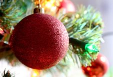 Free Christmas Tree Ornament Royalty Free Stock Image - 3524206