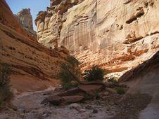 Free Crack Canyon Stock Photos - 3524553