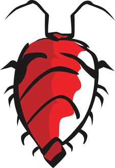 Free A Bug Royalty Free Stock Photo - 3525975