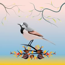 Free Bird Stock Photo - 3527150