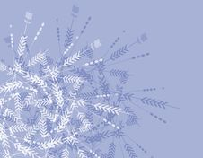 Free Abstract Snowflake Background Stock Photography - 3529052