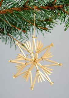 Free Christmas Decorations Stock Images - 3529794