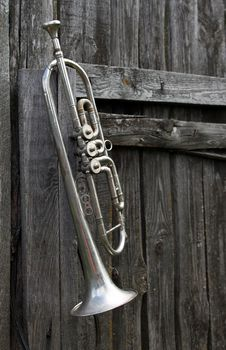 Free Old Trumpet Royalty Free Stock Photography - 35211897