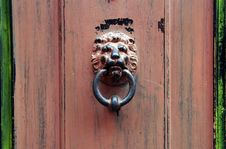 Doorknob Lion Stock Image