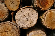 Free Wood Logs Stock Images - 35213354