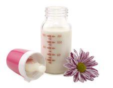Open Milk Bottle With Flower Stock Image
