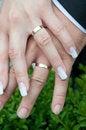 Free Wedding Rings Stock Images - 35255054