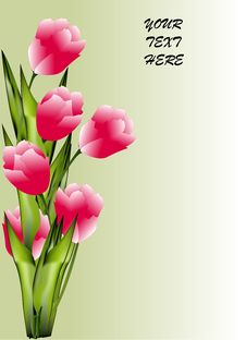 Free Bunch Of Tulip Stock Photo - 35253580