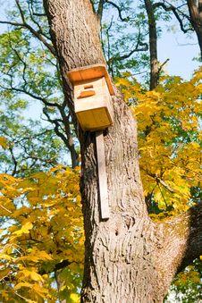 Birdhouse On A Tree Stock Photos
