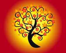 Free Autumn Tree Royalty Free Stock Images - 35258389
