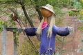 Free Scarecrow Stock Image - 35266571