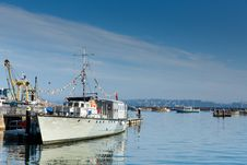 Brixham Marina Devon With Large Boat And Yachts Torbay England UK Royalty Free Stock Photography