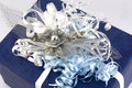 Free Blue Gift Box Stock Image - 3538151