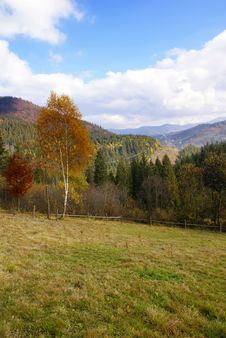 Free Autumn In Carpathian Mountains Royalty Free Stock Photography - 3532077