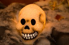 Free Glowing Halloween Skull Royalty Free Stock Image - 3532186