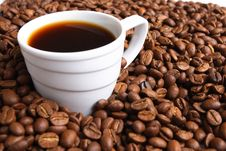 Free Cup Coffee And Coffee Grain Royalty Free Stock Images - 3534829