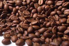 Free Coffee Bean Royalty Free Stock Image - 3534926