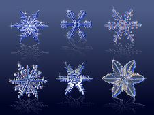 Free Vector Real Snowflakes Stock Photos - 3535343