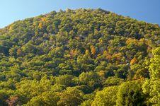 Free Bear Mountain Stock Photo - 3536150