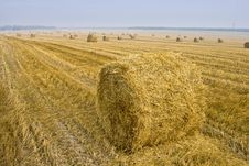 Free Hay Bale Fields Stock Photography - 3536182
