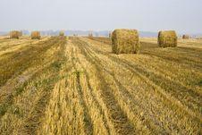 Free Hay Bale Fields Stock Photos - 3536193