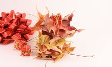 Free Maple Leaf And Gift Stock Photo - 3539460