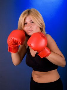 Free Boxing Girl Stock Image - 3539851