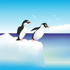 Free Penguins  On The Rocks In Antarctica Stock Photo - 35303500