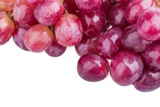 Free Grapes Royalty Free Stock Images - 35303949