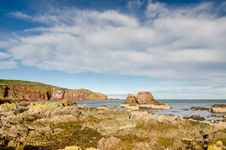Free St Abbs Rocky Shoreline Stock Photography - 35304242