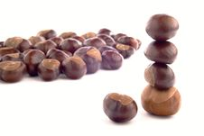 Free Chestnuts Stock Photos - 35306363